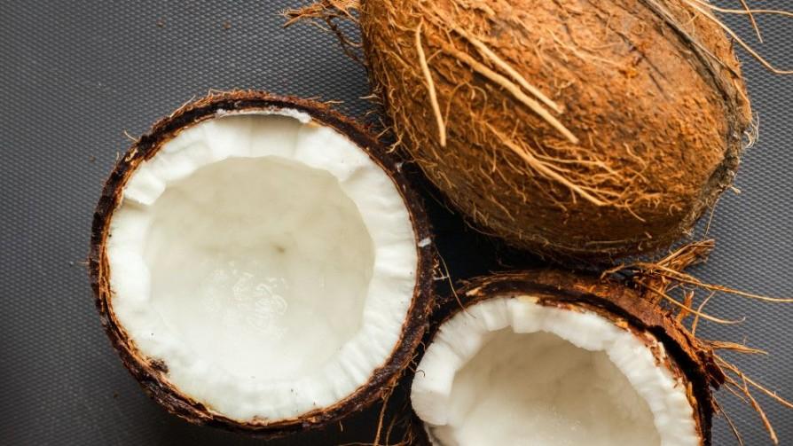 El increíble viaje del artista del coco - La Receta Dispersa - Quién te Dice | DelSol 99.5 FM