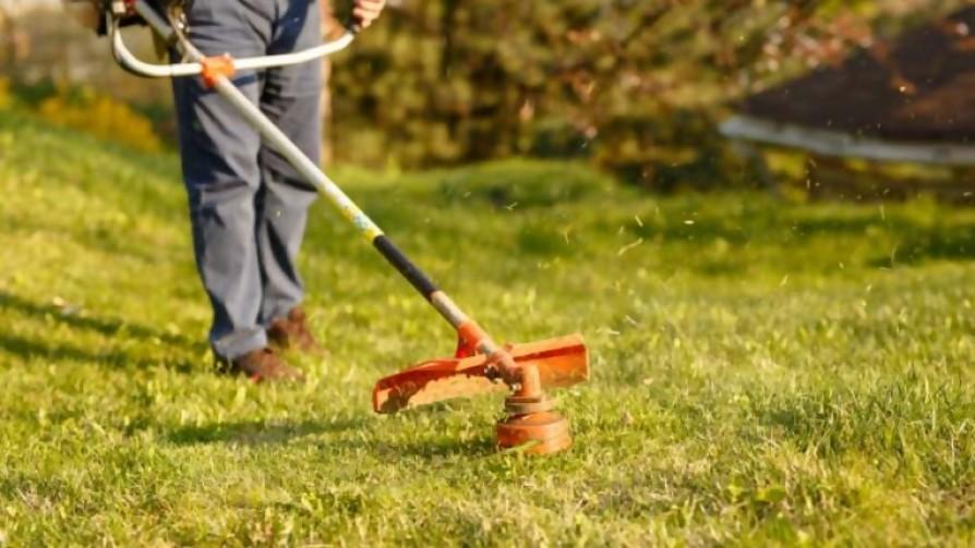 ¿Qué se le dice a un vecino que se pone a cortar el pasto a las 7 de la mañana?  - Sobremesa - La Mesa de los Galanes   DelSol 99.5 FM