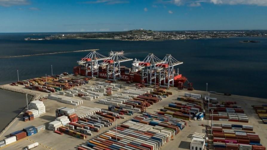 Inicio del Gran Bigote Uruguayo y la pelea de terminales portuarias - Columna de Darwin - No Toquen Nada | DelSol 99.5 FM