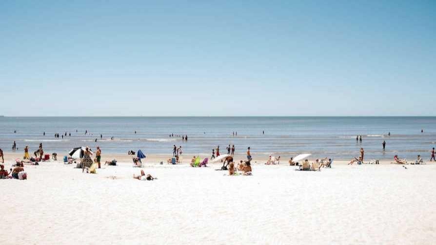 Darwin, de la playa fascista a la playa peronista - Columna de Darwin - No Toquen Nada | DelSol 99.5 FM