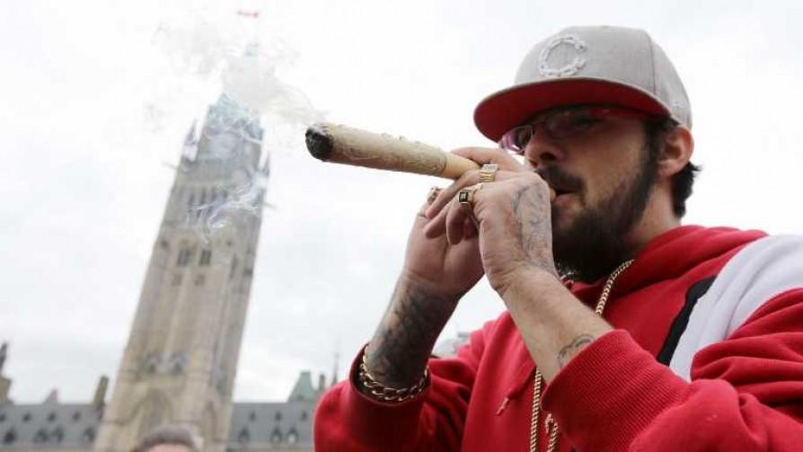 Uruguay y Canadá unidos por el cannabis - Entrevistas - No Toquen Nada | DelSol 99.5 FM