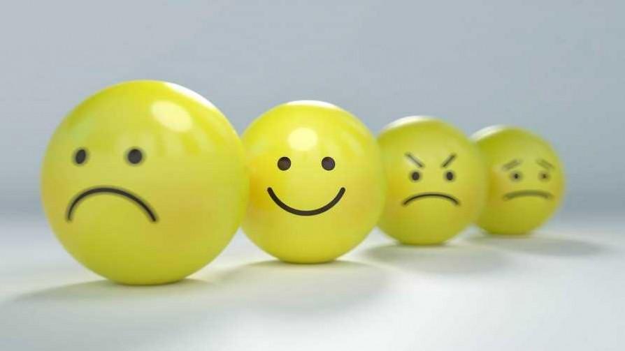 La felicidad actúa de forma opuesta a la impotencia, según Darwin - Columna de Darwin - No Toquen Nada | DelSol 99.5 FM