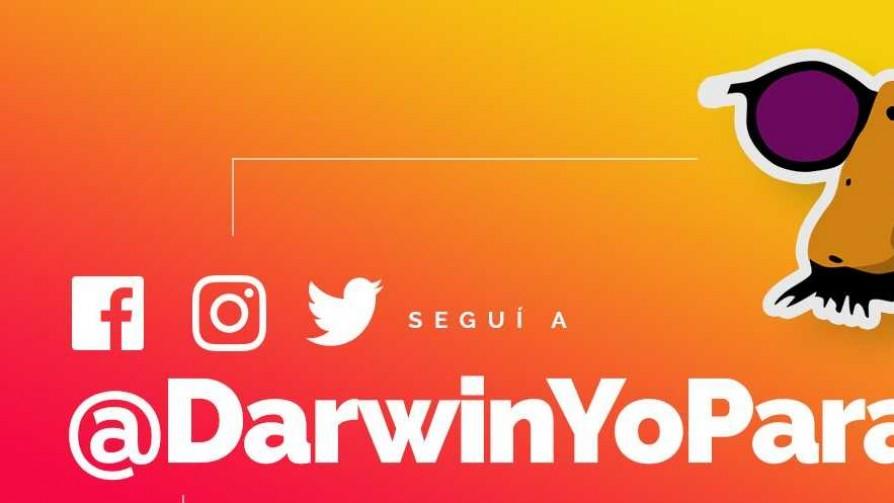 Darwin lanzó sus redes sociales oficiales, con una aclaración - NTN Concentrado - No Toquen Nada | DelSol 99.5 FM