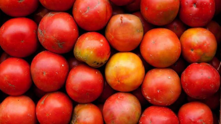 ¿Qué verduras y/o legumbres son los galanes? - Sobremesa - La Mesa de los Galanes | DelSol 99.5 FM