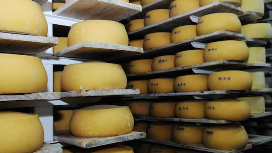 Los tipos de quesos  - Tio Aldo - La Mesa de los Galanes | DelSol 99.5 FM