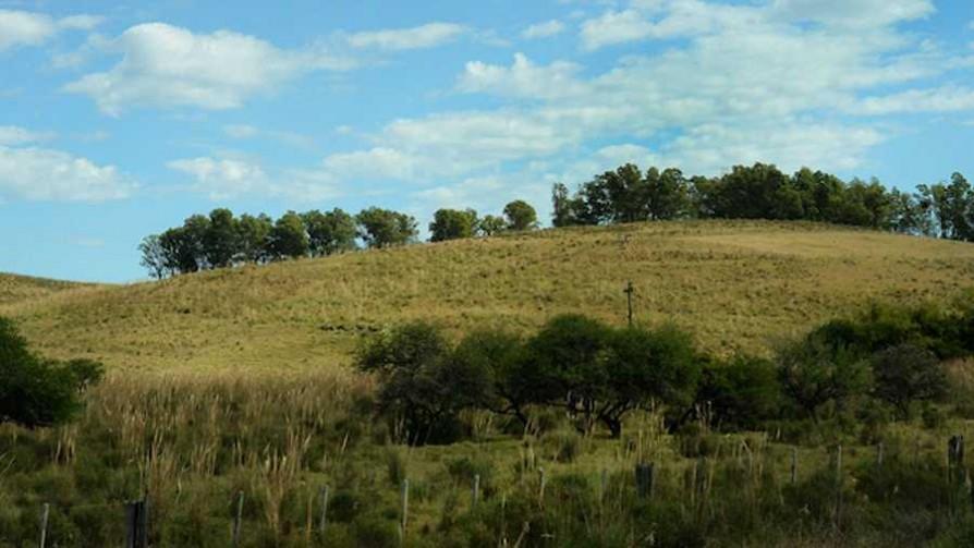 Día Mundial del Medio Ambiente  - Cambalache - La Mesa de los Galanes | DelSol 99.5 FM