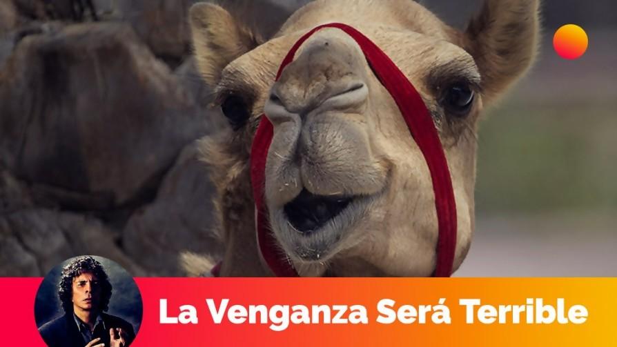 Los camellos en la conquista del oeste - Segmento dispositivo - La Venganza sera terrible | DelSol 99.5 FM