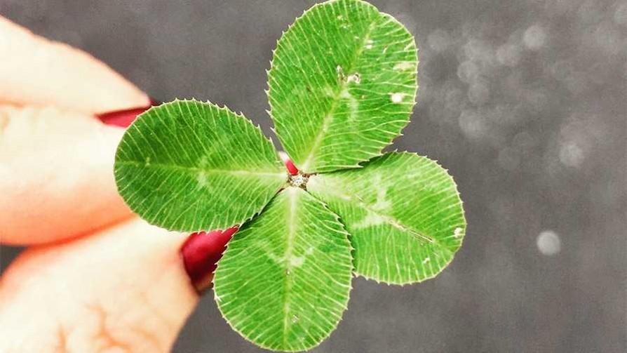 ¿Qué es la suerte? ¿Se consideran afortunados? - Sobremesa - La Mesa de los Galanes | DelSol 99.5 FM