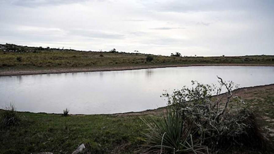 Al banquillo: ¿el campo contra el agua? - Al banquillo  - Facil Desviarse | DelSol 99.5 FM